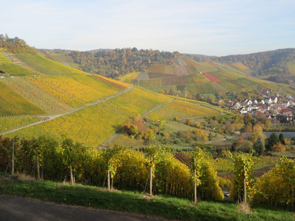Geniessen Sie von der Grabkapelle auf dem Württemberg die Aussicht nach Uhlbach