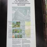 Beim Wandern im Spreewald gibt es vieles zu entdecken, z.B. das Biosphärenreservat!