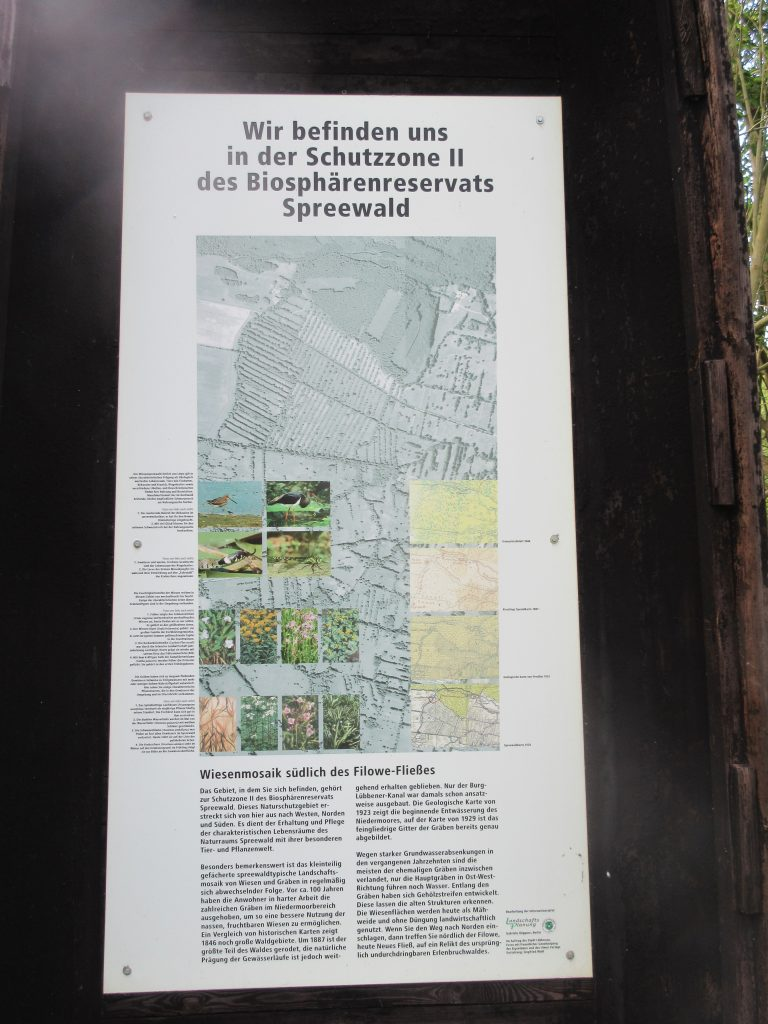 Hier im Wald gibt es vieles zu entdecken, z.B. das Biosphärenreservat!