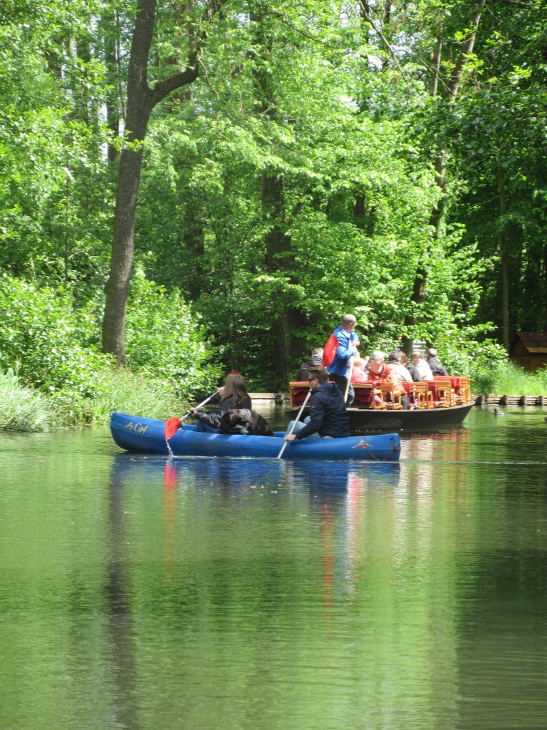Der Spreewald in der Lausitz ist ebenfalls ein beliebtes Urlaubs- und Reiseziel für Sportbegeisterte!