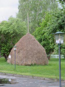 Wandern Sie im Spreewald und bestaunen Sie die berühmten Heuschober rund um Lübbenau, Leipe und Lehde!