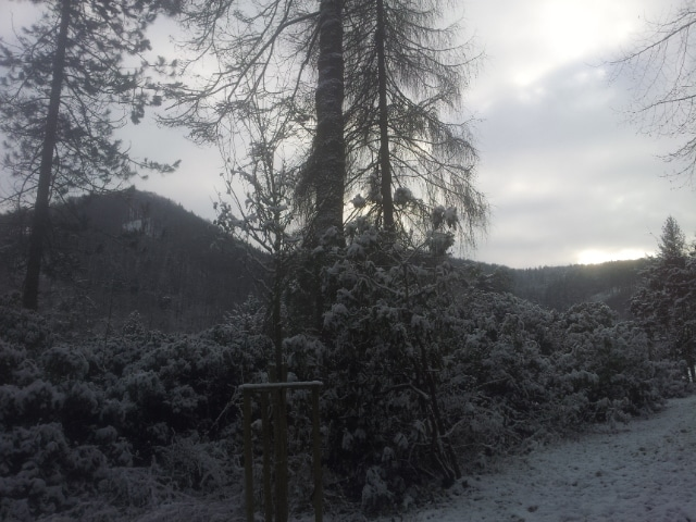 Schneeschuh Wandern auf der Schwäbischen Alb? Mit jungwandern und WANATU geht`s auf die Schopflocher Alb!