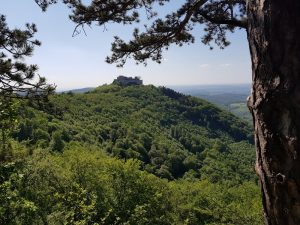 Beim Wandern von weiter Entfernung bestens erkennbar: die Burg Hohenneuffen