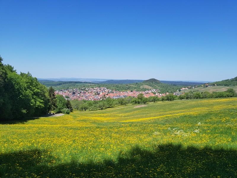 Blauer Himmel, blühende Wiesen: wir können einen Ausflug zur Burg Hohenneuffen nur empfehlen!