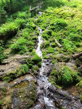 Kleiner, aber nicht minder schön und nicht von Touristen überlaufen: der Autaler Wasserfall bei Bad Überkingen!