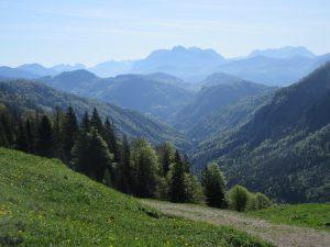 Herrliche Weitblicke genießen wir beim Wandern im Kaiserbachtal!