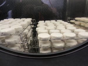 Käse, Käse, Käse in der Schaukäserei in Kirchdorf. Wer möchte da nicht mal gerne Mäuschen spielen?