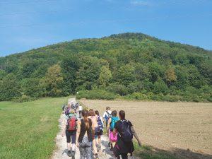 Hinauf geht`s: knapp 260m Höhenmeter gilt es zu überwinden, wandert man die Felsenrunde der Löwenpfade bei Bad Überkingen!