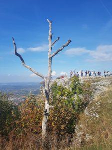Auch diesmal wieder tolle Aussichten beim Wandern mit der jungwandern.de Gruppe bei der aktuellen Gruppenwanderung!