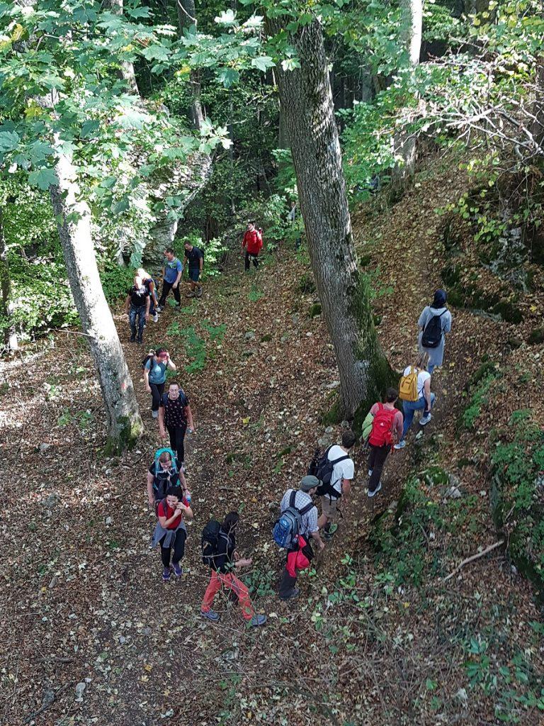 Mal geht`s bergauf bei der Gruppenwanderung....dergruppe rauf auf die nächste Burgruine: auf die Diepoldsburg!