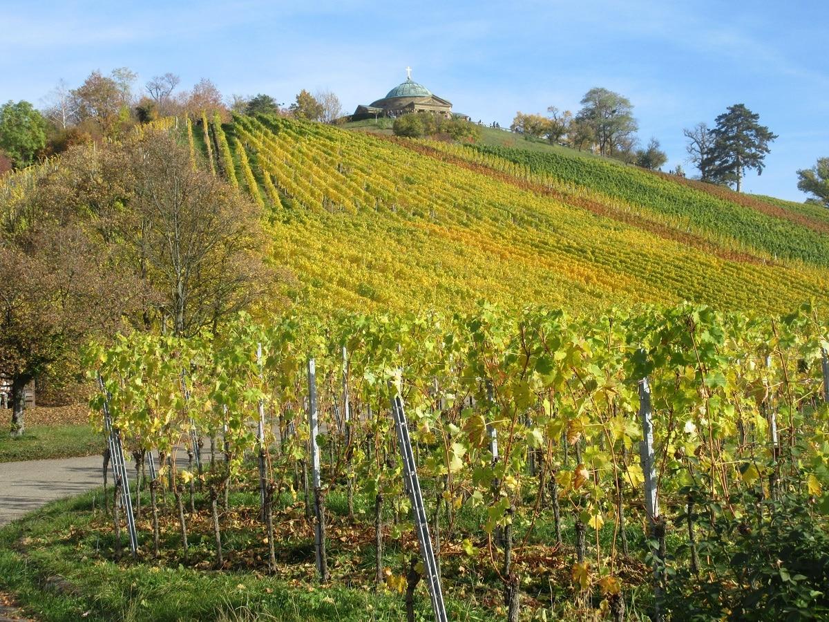 Auf die Grabkapelle Rotenberg wandern und die schöne Aussicht auf Stuttgart geniessen!