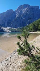 Kristallklares Bergwasser im Pragser Wildsee in den Dolomiten