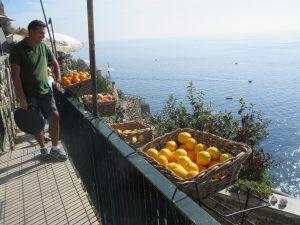 Selbstverständlich dürfen auch Zitrusfrüchte nicht am Küstenstreifen der Cinque Terre fehlen!