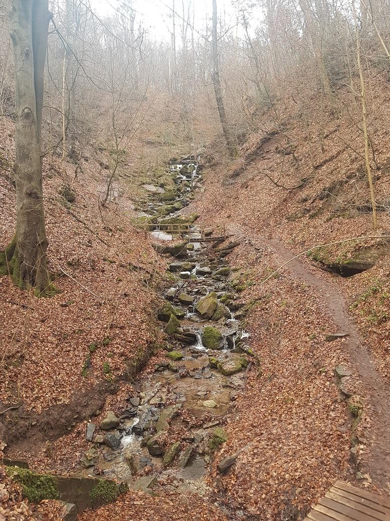 Der Heslacher Wasserfall ist ein kleines Highlight, möchte man kurz vor Stuttgart wandern gehen!