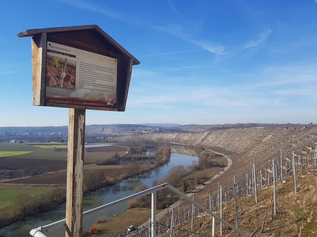 Diesmal wandern wir einmal um die Hessigheimer Felsengärten bei Besigheim!