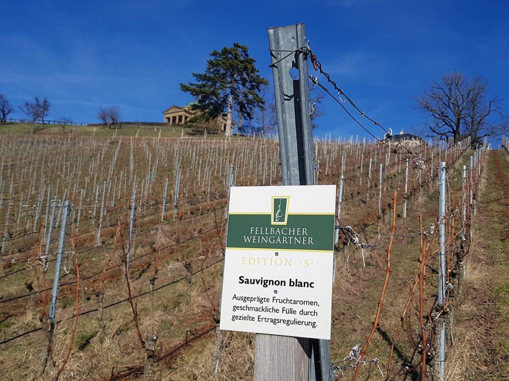 Welcher Wein darf es denn sein? Auch das Weinwandern ist sehr beliebt, geht man von Untertürkheim zur Burg Esslingen wandern!