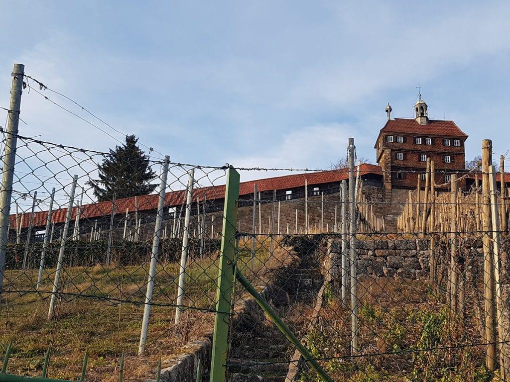 Der Blick zurück auf die Burg Esslingen: diese Wanderung hat sich wirklich gelohnt!