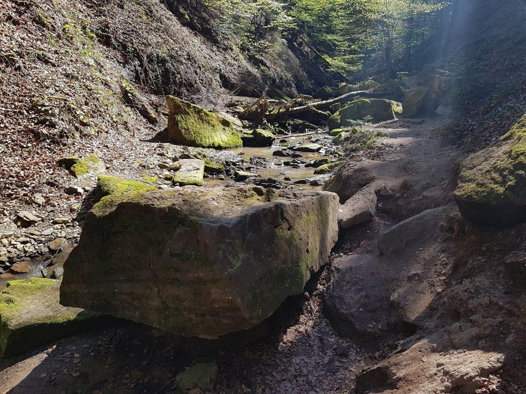Zahlreiche Fels- und Gesteinsbrocken säumen den Wanderweg in der Hörschbachschlucht!