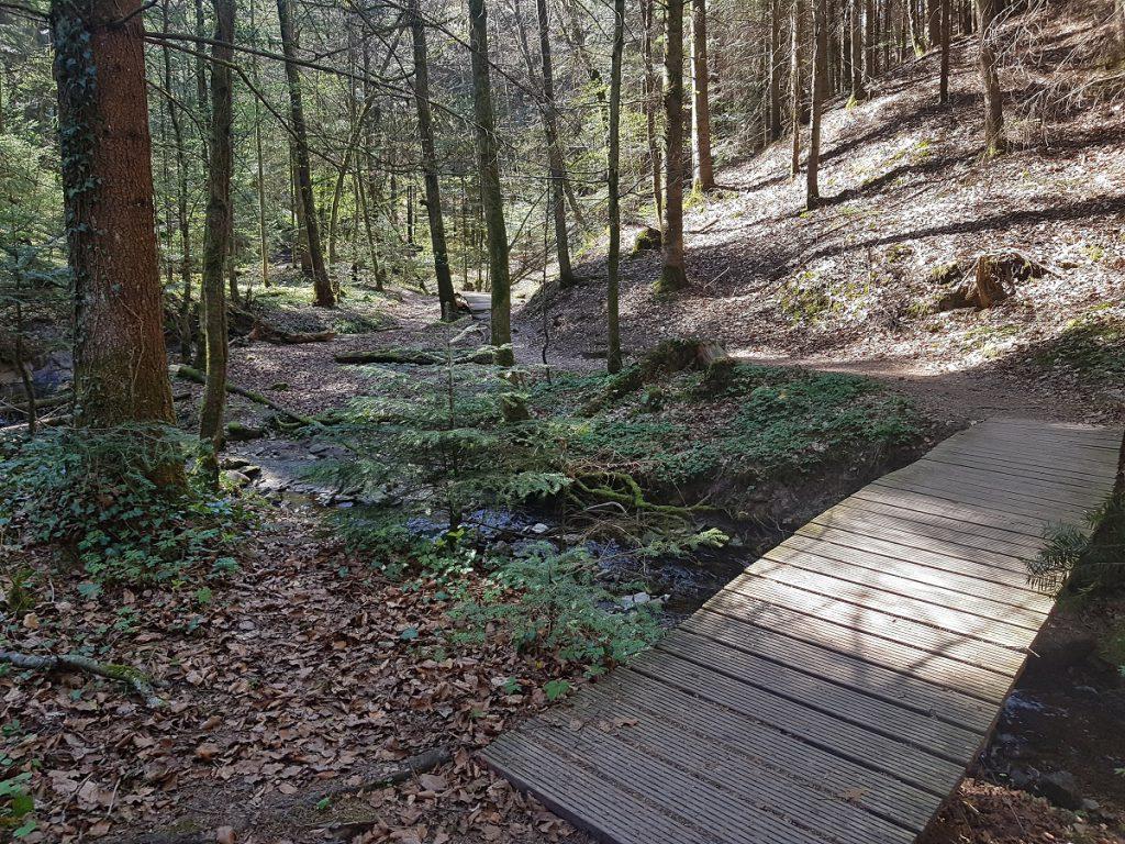 Zahlreiche, gut gebaute Brücken begleiten uns immer wieder beim Wandern über den Hörschbach!