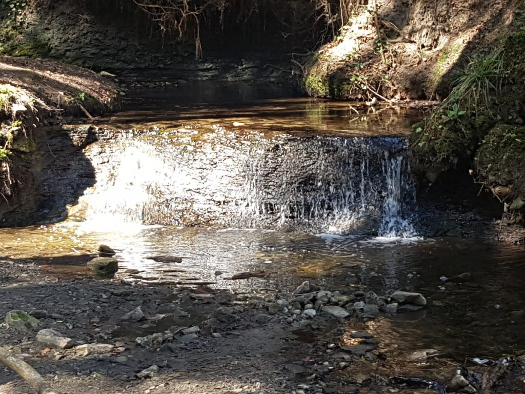 Ein Mini-Wasserfall im Hörschbachtal, wenn man so möchte.