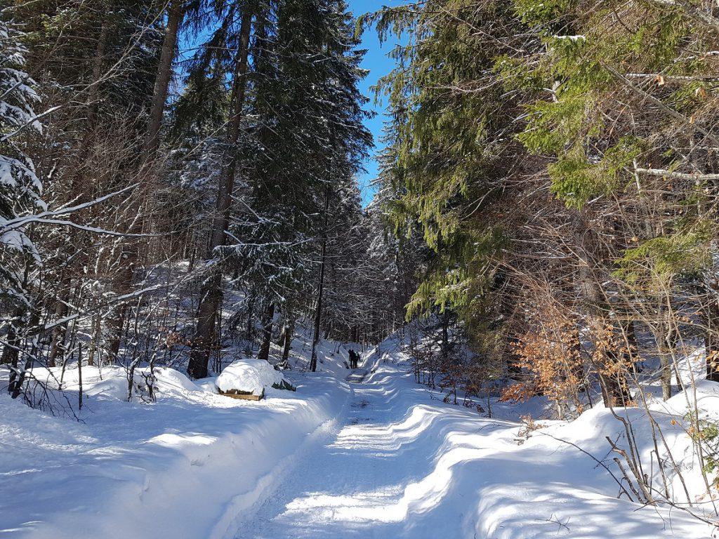Der März bietet sich in Reutte zu einer fantastischen Winterwanderung zur Burg Ehrenberg an!