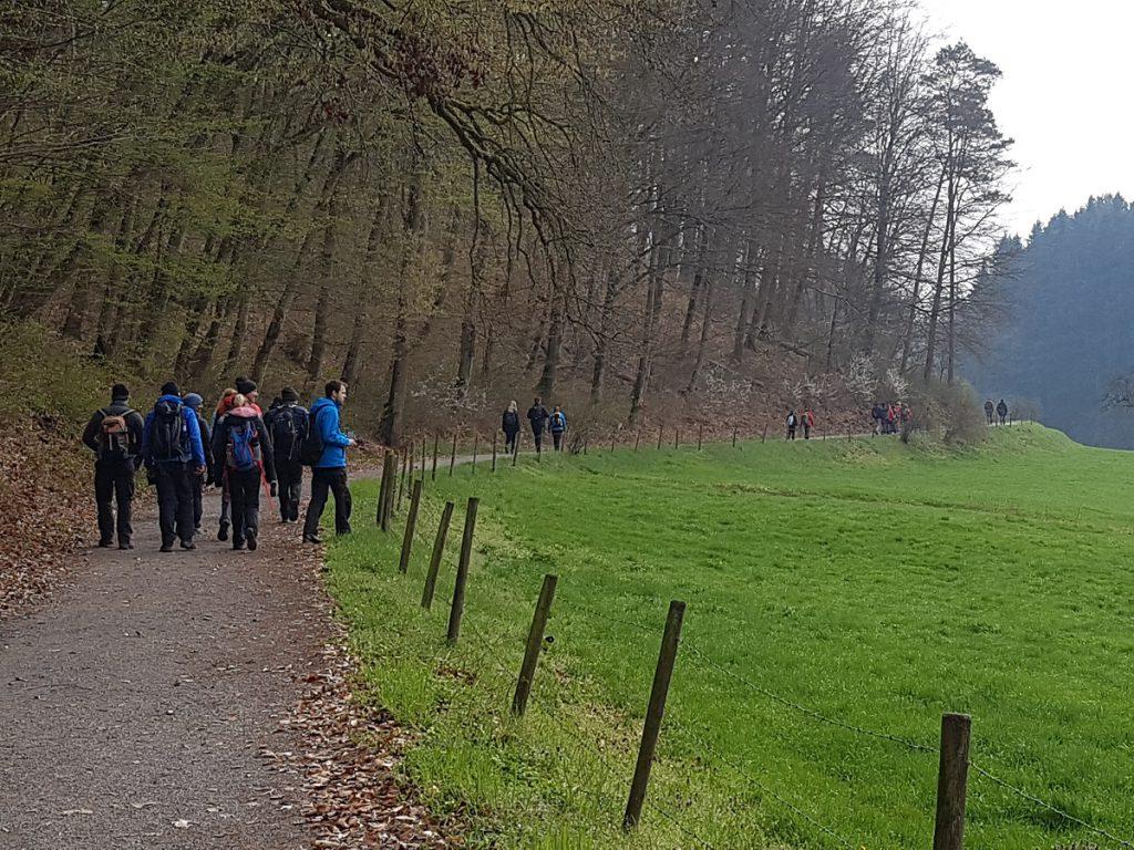 Bei fast 30 Teilnehmern bleibt es nicht aus, dass die Gruppe zwischendurch beim Wandern ein wenig auseinander driftet. Aber wir haben uns immer wieder zusammen gefunden!