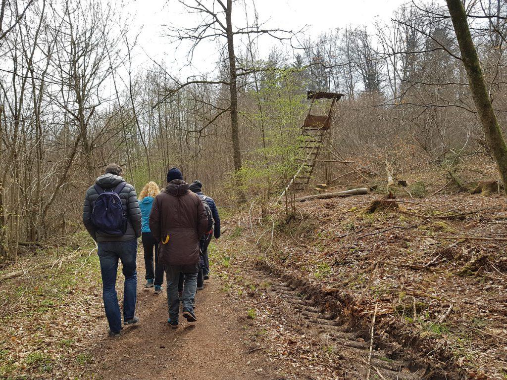 Mitten durch den Wald wandern wir weiter Richtung Burkhardtsmühle!