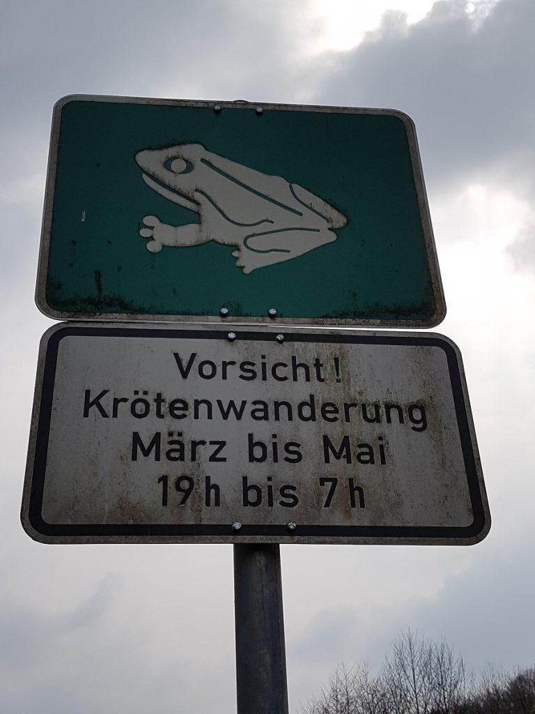 Gelegentlich finden hier im Siebenmühlental noch ganze andere Wanderungen statt: Krötenwanderungen! Also immer zu den angegebenen Zeiten auf den nächsten Schritt aufpassen!