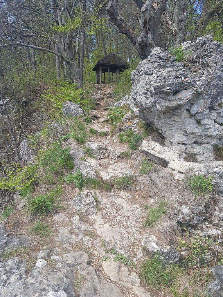 Am Tirolerfelsen bekommt man einen Vorgeschmack auf weitere Felsformationen, die uns auf der Wanderung des Filstalgucker noch erwarten werden!