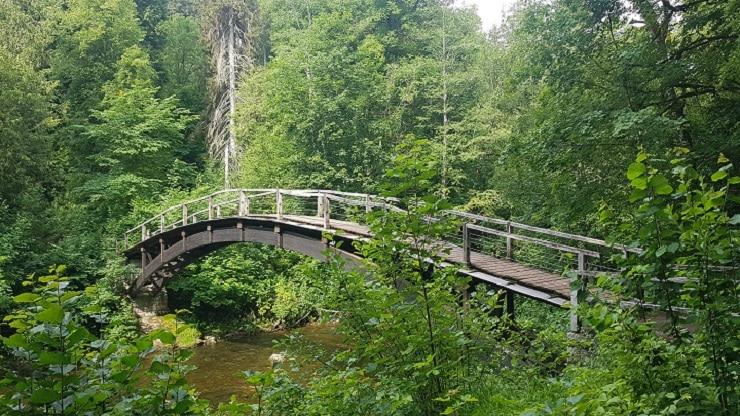 Pittoreske Holzbrücke in der Wutachschlucht