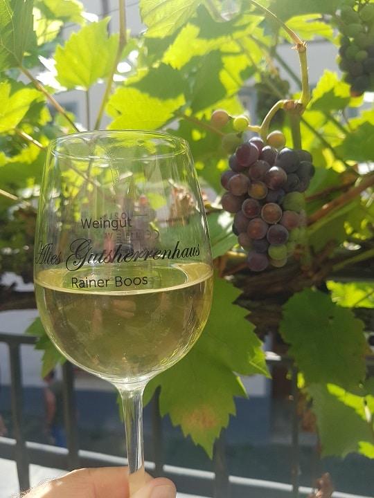 rote Weintrauben und Weinglas