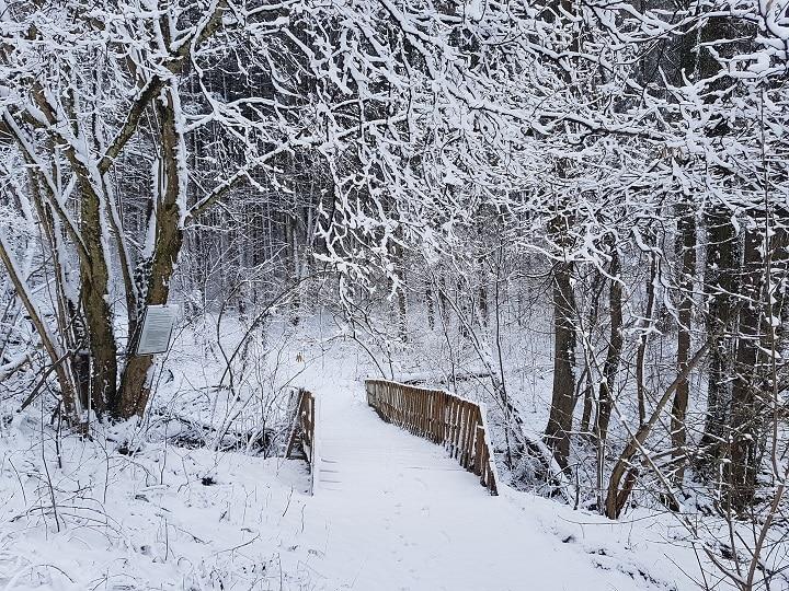 Verschneite Holzbrücke im Wald