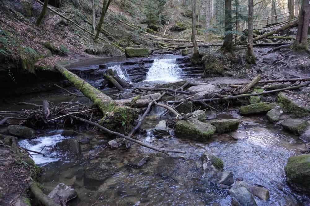 Kleiner Wasserfall in Strümpfelbachschlucht