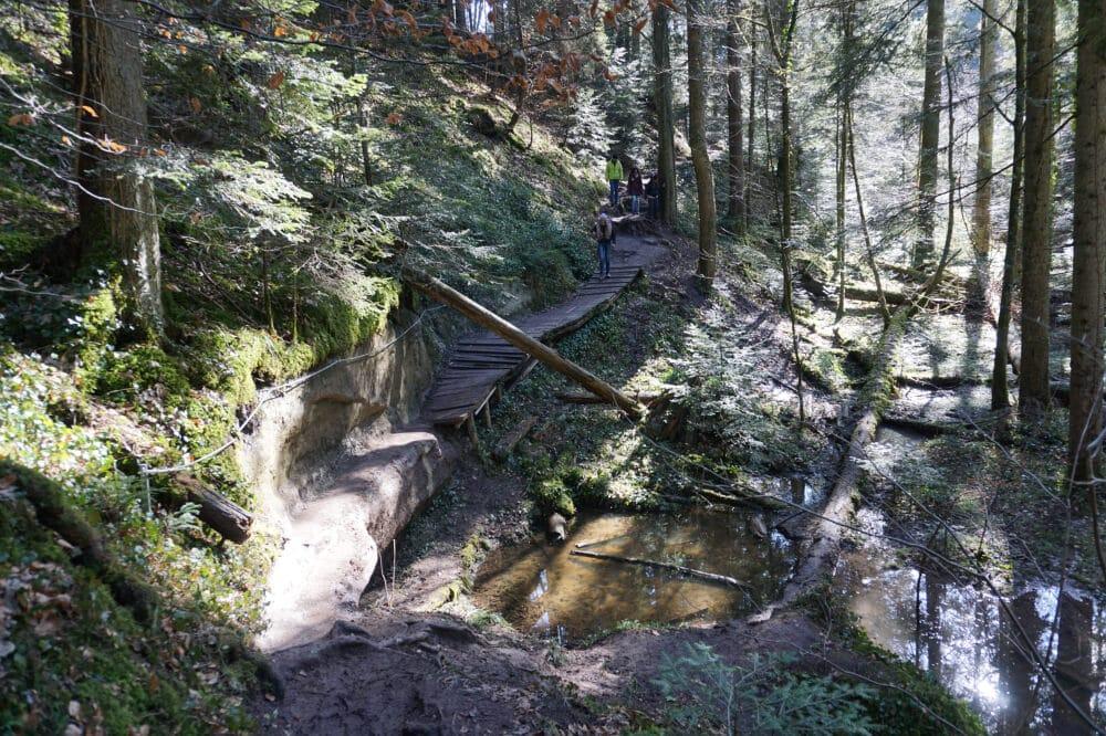 Holzbrücke in der Edenbachschlucht