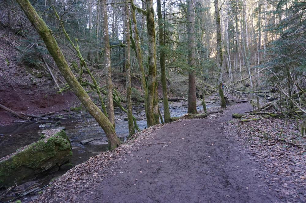 Matschiger Wanderweg neben Bach