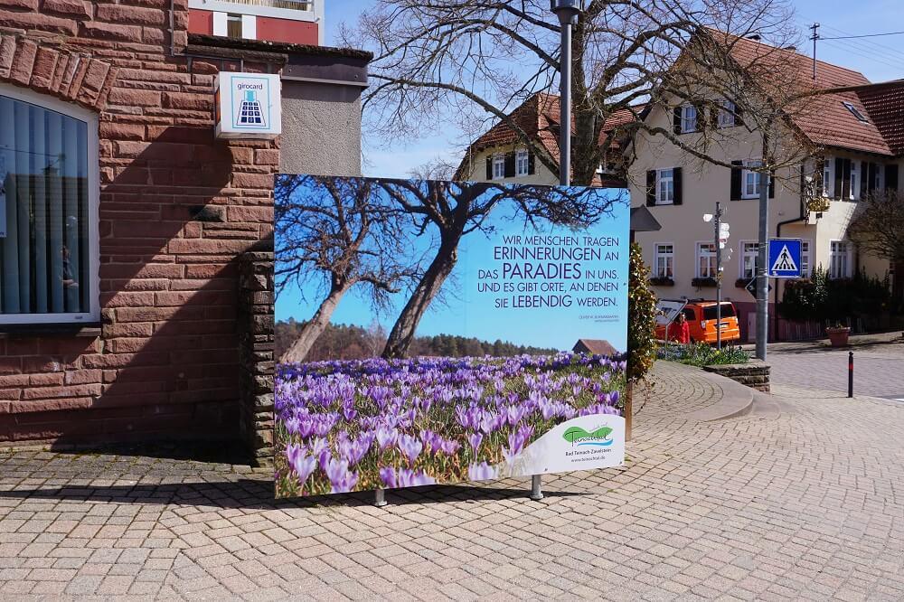 Bad Teinach Hinweistafel Orchideenblüte