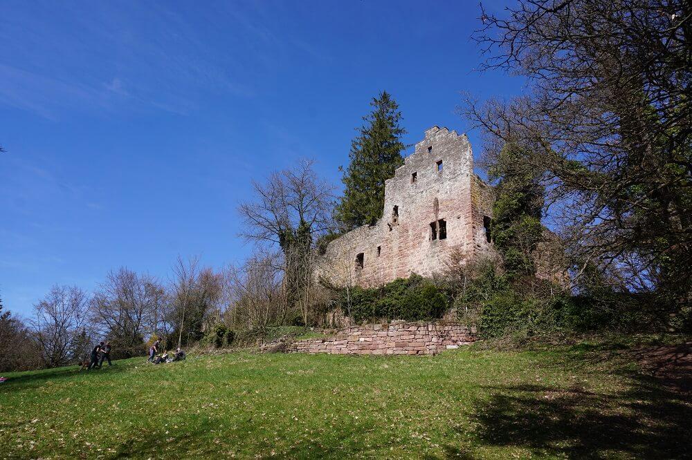 Wiese vor der Burg Zavelstein