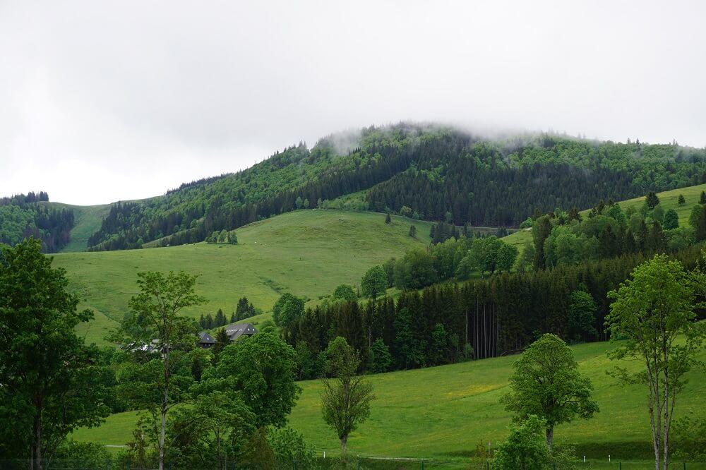 Nebelschwaden über Bernauer Alb