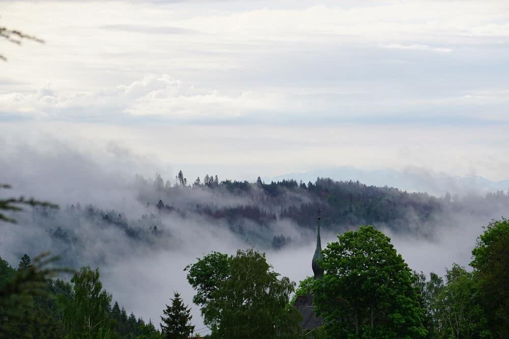 Nebelschwaden Wittenschwand