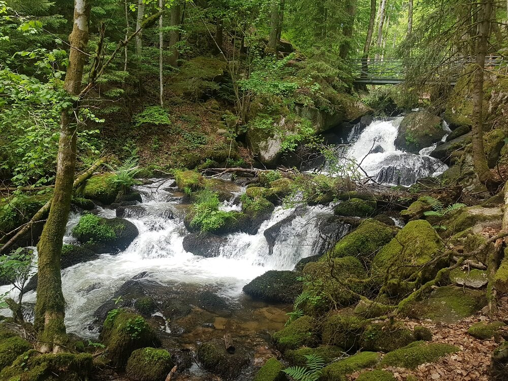 Wasserfälle im Höllbachtal