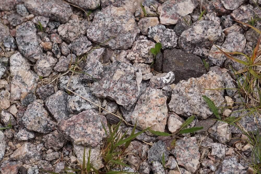 Granitsteine auf dem Wanderweg